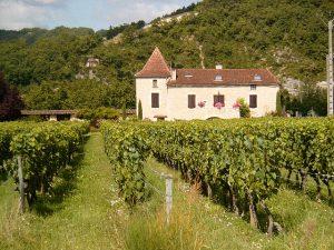 Les vins de Cahors